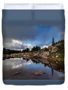 Rainier Spray Park Reflection Duvet Cover