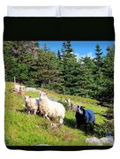 Ram And Ewes Duvet Cover