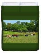 Ranch Daisies Duvet Cover
