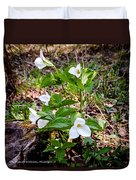 Rare Great White Trilliums Duvet Cover