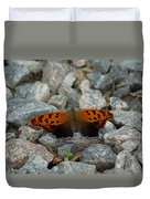 Rarely-sighted Butterfly Species Duvet Cover