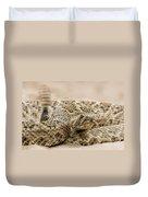 Rattlesnake 1 Duvet Cover