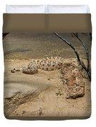 Rattlesnake Arizona Desert Duvet Cover