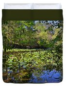 Ravine Gardens - A Different Look At Florida Duvet Cover by Christine Till