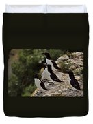 Razorbill Cliff Duvet Cover