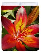 Red And Orange Lilly In The Garden Duvet Cover