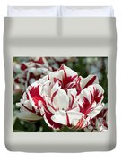 Red And White 6393 Duvet Cover