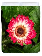 Red And White Gerber Daisy Duvet Cover