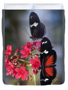 Red And White Longwing Butterflies  Duvet Cover