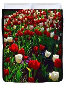 Red And White Tulip Art Duvet Cover