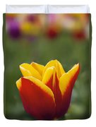 Red And Yellow Tulip Closeup Duvet Cover