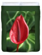 Red Anthurium #2 Duvet Cover