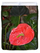 Red Anthurium Flower Duvet Cover
