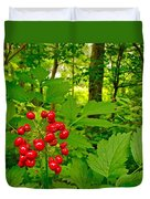 Red Baneberry Along Rivier Du Nord Trail In The Laurentians-qc Duvet Cover