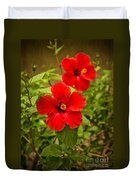 Red - Beautiful Hibiscus Flowers In Bloom On The Island Of Maui. Duvet Cover