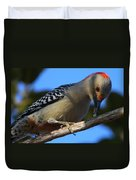 Red-bellied Woodpecker Catching Grub Duvet Cover