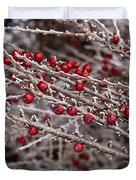 Red Berries Covered In Snow Duvet Cover