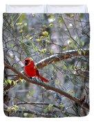 Red Bird In Dogwood Duvet Cover