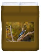 Red Breasted Nuthatch Duvet Cover