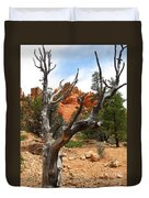 Red Canyon Tree And Rocks Duvet Cover