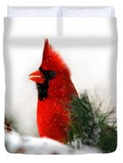 Red Cardinal Duvet Cover