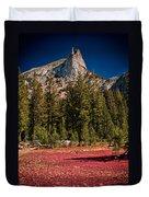 Red Carpet Duvet Cover