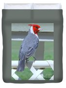 Red Crested Cardinal No 2 Duvet Cover