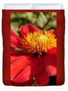 Red Dahlia Coccinea Duvet Cover