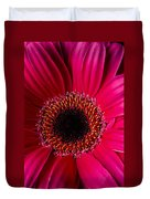 Red Daisy Close Up Duvet Cover