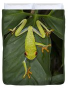 Red-eyed Tree Frog Costa Rica Duvet Cover