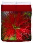 Red Fairy Duster Calliandra Californica Duvet Cover