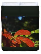Red Fall Leaves Close Up Duvet Cover
