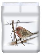 Red Finch Duvet Cover