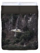 Red Footed Booby In Flight Duvet Cover