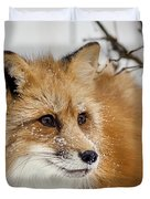 Red Fox In Snow Duvet Cover