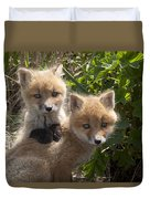 Red Fox Kits Playing Alaska Duvet Cover