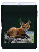 Red Fox Duvet Cover by Kristin Elmquist