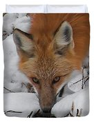 Red Fox Upclose Duvet Cover