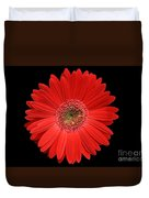Red Gerber Daisy #2 Duvet Cover