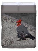 Red Head Duvet Cover