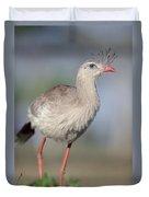 Red-legged Seriema Foraging  Pantanal Duvet Cover