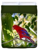 Red Lory Duvet Cover