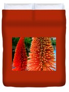 Red-orange Flower Of Eremurus Ruiter-hybride Duvet Cover