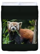 Red Panda With An Attitude Duvet Cover