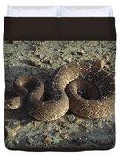 Red Rattlesnake Baja California Mexico Duvet Cover