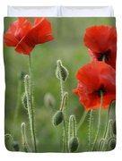 Red Red Poppies 1 Duvet Cover