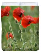 Red Red Poppies 2 Duvet Cover