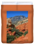 Red Rock Canyon 6 Duvet Cover