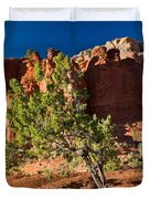 Red Rocks And Tree 1 Duvet Cover