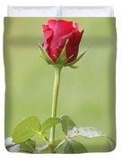 Red Rose Bud 1 Duvet Cover